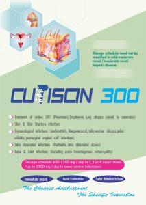 Cutiscin 300 13